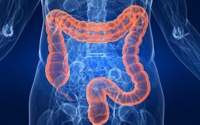 LA SINDROME DEL COLON IRRITABILE (IBS) E (IBS-C): LE TERAPIE CI SONO, MA SONO A CARICO DEL PAZIENTE