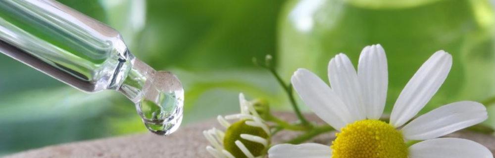 Essenza - Floriterapia